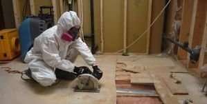 Water Damage Restoration and Mold Removal In Process On Flooring